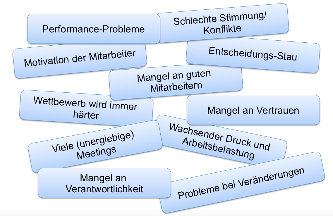 Probleme in Organisationen