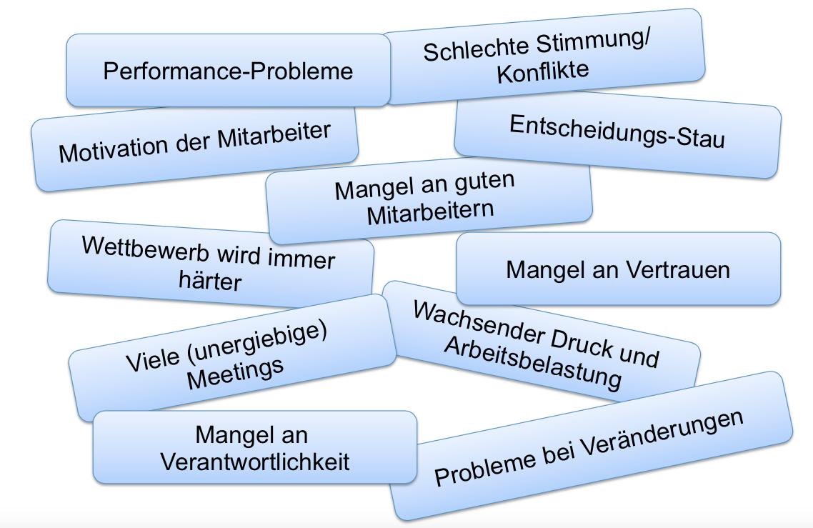 Probleme in Organisationen